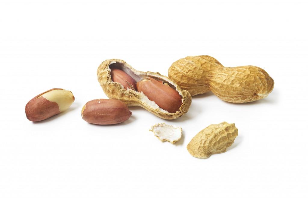 peanuts-1024x658